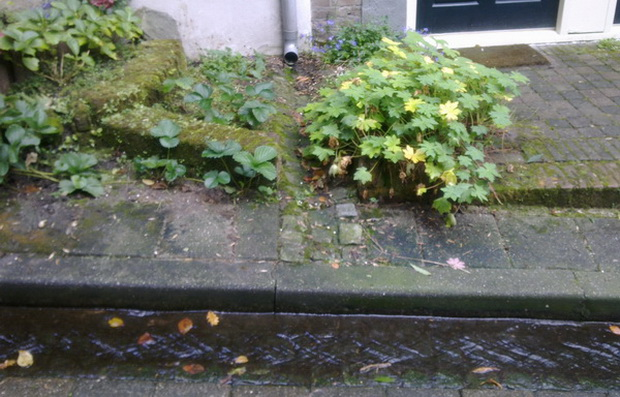 RILLS ANIMATE THE STREETS OF BEEK AND MANAGE WATER ON THE SURFACE RATHER THAN IN DRAINS
