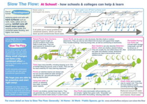 You Can Slow The Flow: At School