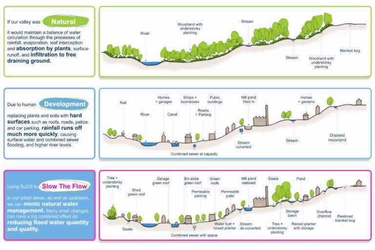 SuDS NFM principles Section Diagram
