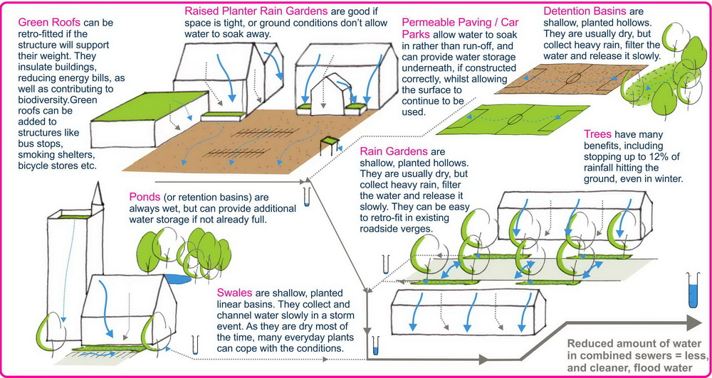 You Can Slow The Flow : Public Spaces - SuDS