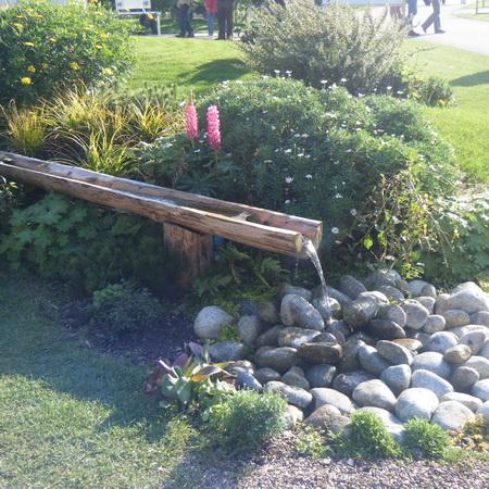 Slow The Flow At School-Rain Garden