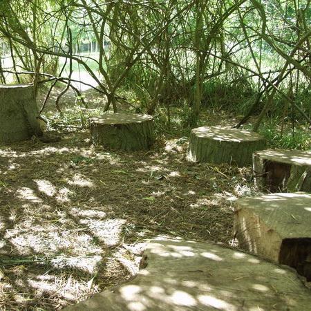 Living Willow Den