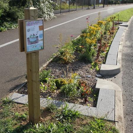 Retrofit rain garden in roadside verge
