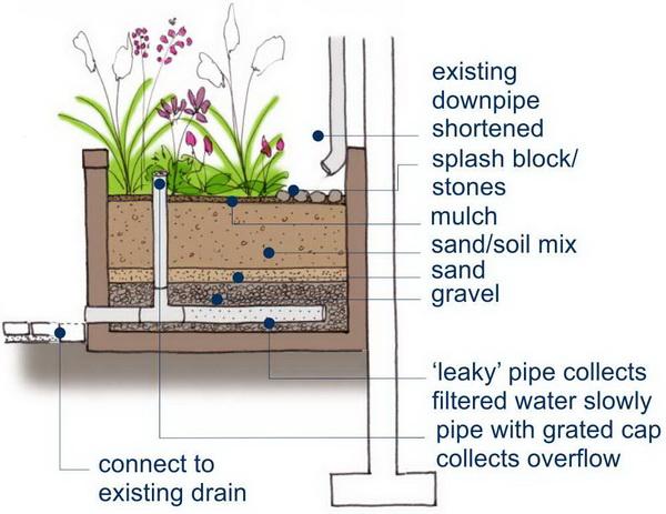 Rain Garden Planter