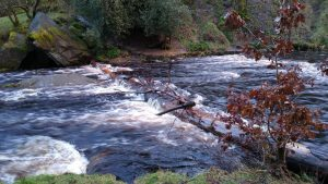 tethered leaky dams at hardcastle crags after heavy rainfall Jan 2021