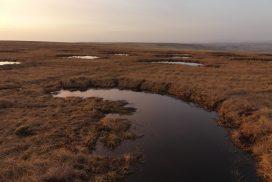 P1020125_Bunded_Landscape.JPG
