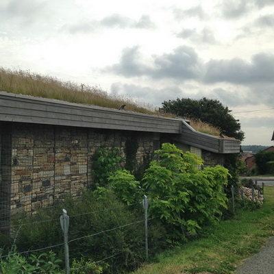 Green Roof Manor Fields Sheffield