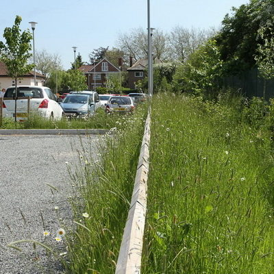 Gravel car park and swale