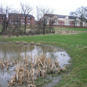 Detantion Basin Sheffield