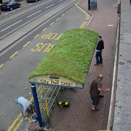 Bus stop with green roof, Manchester